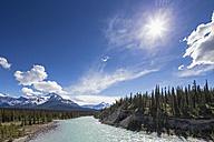 Canada, Alberta, Jasper National Park, Banff National Park, Icefields Parkway, Saskatchewan River - FOF005657