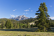 Canada, Alberta, Jasper National Park, landscape at Icefields Parkway - FOF005662