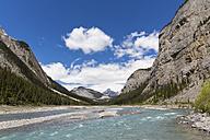 Canada, Alberta, Jasper National Park, Banff National Park, Icefields Parkway, Bow River - FOF005668