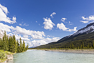 Canada, Alberta, Jasper National Park, Banff National Park, Icefields Parkway, view of river - FOF005710