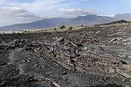 Spain, Canary Islands, La Palma, natural landmark Tubo Volcanico de Todoque near Las Manchas - SIEF004988
