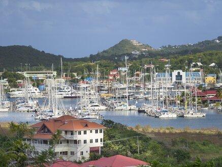 Caribbean, Lesser Antilles, Saint Lucia, Rodney Bay, marina - AMF001741