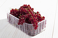 Plastic bowl with currants on wooden table - CSF020670