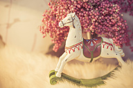 Decoration of rocking horse and pink peppercorns - MJF000758