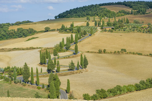 Italy, Tuscany, Val d'Orcia, Landscape with winding road at Monticchiello - MJF000817