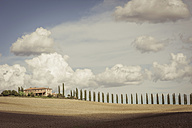 Italy, Tuscany, Val d'Orcia, Landscape with cypresses - MJ000737