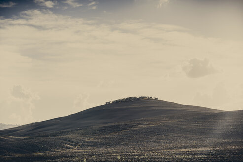Italy, Tuscany, Val d'Orcia, Rolling landscape - MJF000746