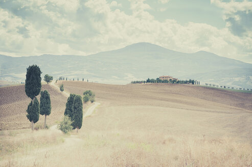 Italy, Tuscany, Val d'Orcia, Rolling landscape at Siena - MJF000863