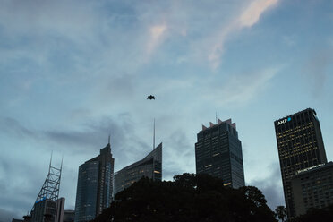 Australia, New South Wales, Sydney, view to skyscrapers, bat in the sky - FBF000223