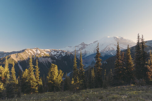 USA, Washington State, View over Mt Rainier National Park - MFF000861