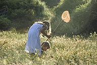 Two children with butterfly net on a meadow - PAF000335
