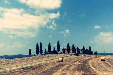 Italy, Tuscany, house with row of cypresses in front - PAF000341