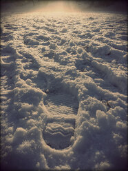Footprints in the Snow, Landshut, Germany - SARF000229