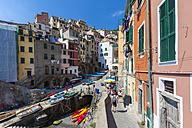 Italy, Cinque Terre, La Spezia Province, Liguria, Riomaggiore, fishing village - AM001802