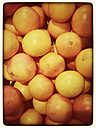Oranges (Citrus sinensis), Supermarket - CSF020837