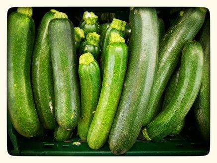 Zucchini (Cucurbita pepo subsp pepo convar, giromontiina), Supermarket, Germany - CSF020830