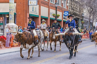 USA, Texas, San Antonio, Grand opening parade of the 2014 Rodeo, Longhorn cattle - ABA001238