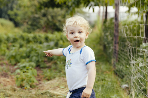 Toddler pointing at something in vegetable garden - MFF000876