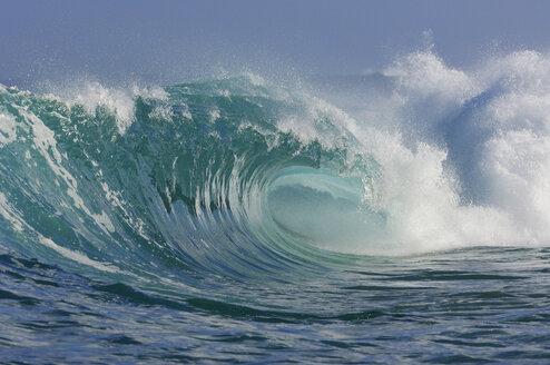USA, Hawaii, Oahu, wave at the North shore - RUEF001171