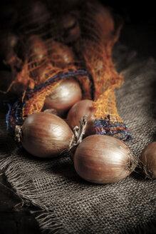 Sack with onions - SBDF000588