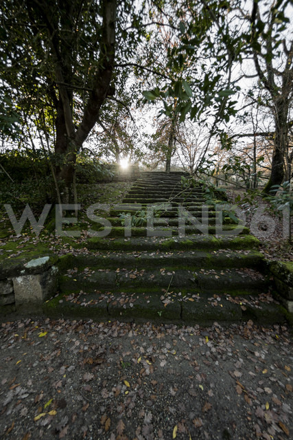 Italy, Rome, Stairs in parc - KAF000110 - blauphoton/Westend61