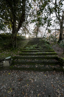 Italy, Rome, Stairs in parc - KAF000110