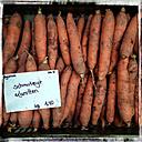 Germany, Baden-Wuerttemberg, Tuebingen, weekly market, carrots - LVF000635