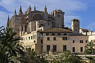 Spain, Majorca, Palma, Cathedral La Seu - THAF000060