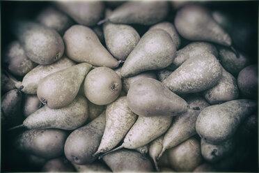 Germany, Baden-Wuerttemberg, Freiburg, vegetable market, Pears (Pyrus) - ELF000849