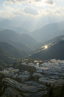 China, Yunnan, Yuanyang, Rice terraces - JBAF000087