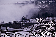 China, Yunnan, Yuanyang, Overcast rice terraces - JBA000089