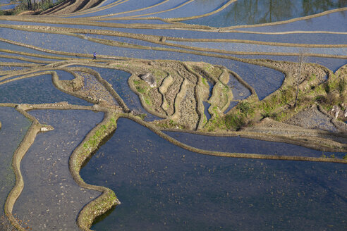 China, Yunnan, Yuanyang, Woman on rice terraces - JBA000099