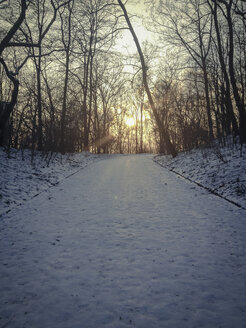 Snow and sunset in Park, Berlin, Germany - FBF000239