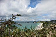 New Zealand, North Island, Waikato, Coromandel Peninsula, Hahei Beach - JB000021