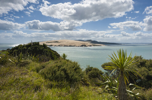 New Zealand, North Island, Northland, Far North District, Hokianga Harbour Entrance with Tasman Sea, North Head and giant sand dune - JB000023
