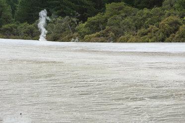 New Zealand, North Island, Bay of Plenty, Rotorua, Wai-O-Tapu, sinter terrace with fumarole - JB000067
