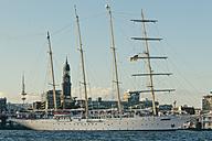 Germany, Hamburg, Sailing cruise shio Star Clipper in front of Hamburg Michel - MS003346