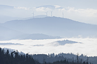 Germany, Baden-Wuerttemberg, Black Forest, wind turbines befogged - LAF000604