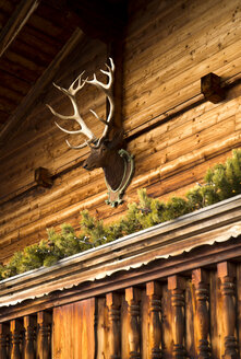 Austria, Tyrol, Alpbach, Wooden house with deer head - TKF000280