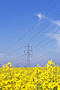 Germany, North Rhine-Westphalia, Pulheim, view to rape fields (Brassica napus) in front of overland high voltage power line - GW002604