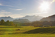 Germany, Bavaria, Chiemgau, Samerberg near Grainau - SIEF005124