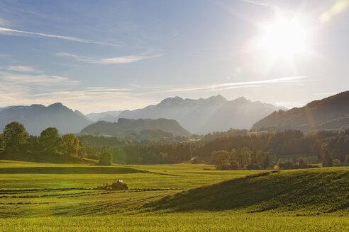Germany, Bavaria, Chiemgau, Samerberg near Grainau - SIEF005124