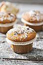 Muffins in paper cups sprinkled with powdered sugar on wooden table - MAEF008064
