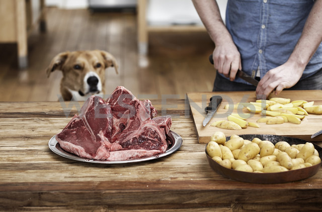 Man in kitchen preparing potatoes and steaks with dog watching - FMKF001082
