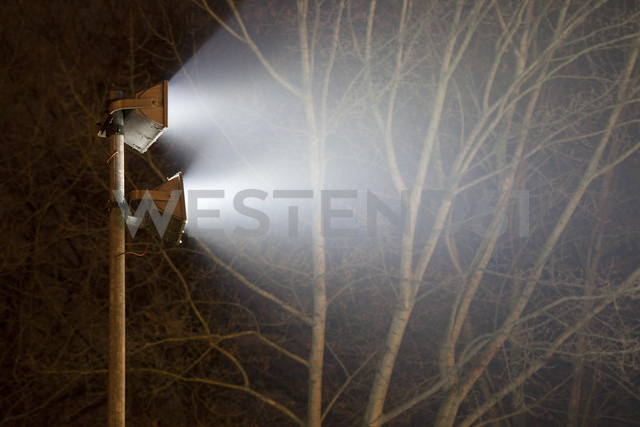 Germany, Munster, Flood light lighting bare trees - WIF000468 - Wilfried Wirth/Westend61