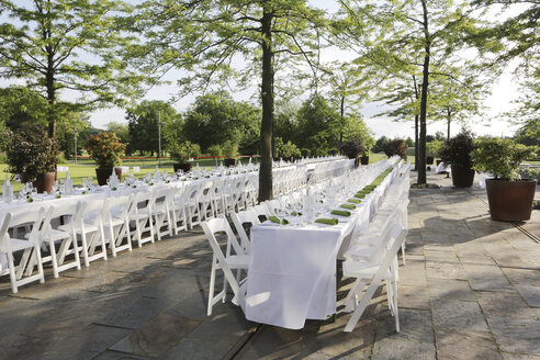 Festive laid tables with green napkin - JAT000698