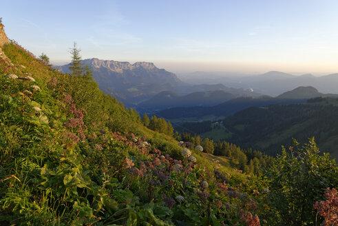 Germany, Upper Bavaria, Berchtesgadener Land, Hoher Goell, Untersberg, sunrise - LBF000625