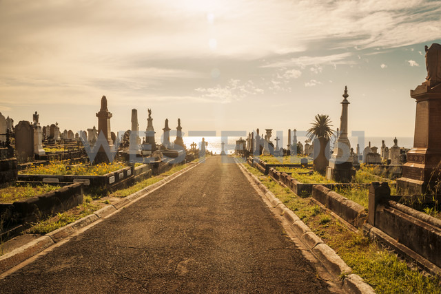Australia, Sydney, view to Clovally cemetary - FB000274