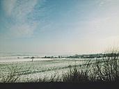 Winter landscape near Goettingen, Lower Saxony, Germany - MSF003470