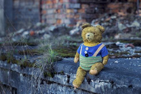 Poland, Auschwitz, old teddy bear - HCF000004